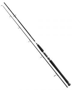 Daiwa BG Pilk 2,70m 50-165g