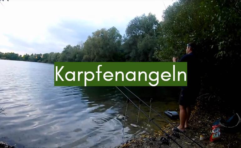 Eine wichtigste Wahl jedes Fischers – eine Rute für erfolgreiches Karpfenangeln