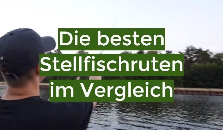 Stellfischrute Test 2021: Die besten 10 Stellfischruten im Vergleich
