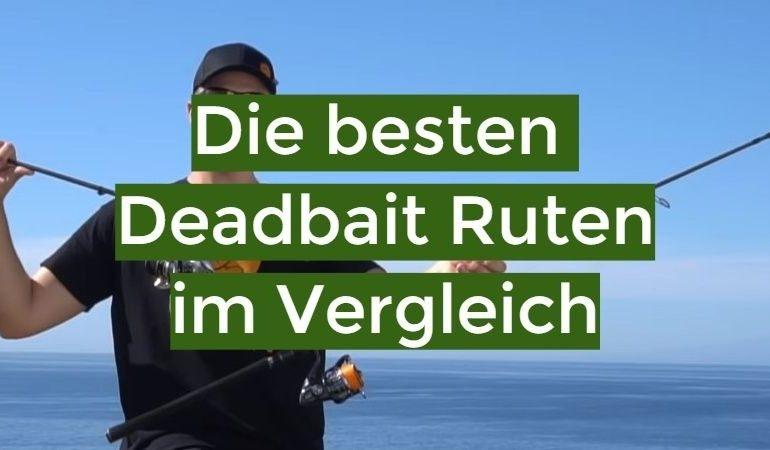 Deadbait Rute Test 2021: Die besten 10 Deadbait Ruten im Vergleich
