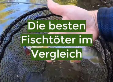 Fischtöter Test 2021: Die besten 5 Fischtöter im Vergleich