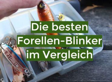 Forellen-Blinker Test 2021: Die besten 5 Forellen-Blinker im Vergleich
